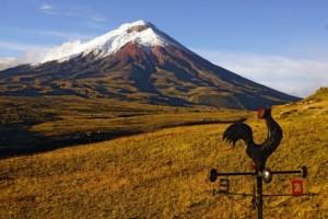 Auf Humboldts Spuren zwischen mächtigen Vulkanen