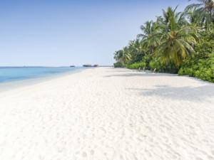 Cocoon Maldives