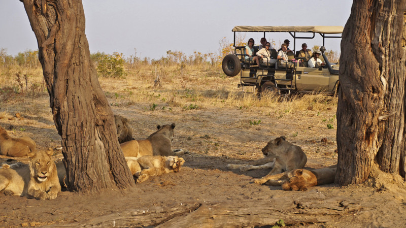 Höhepunkte Botswanas