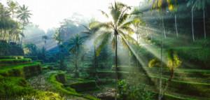 Indonesien – Unvergessliche Sonnenaufgänge am Borobudur