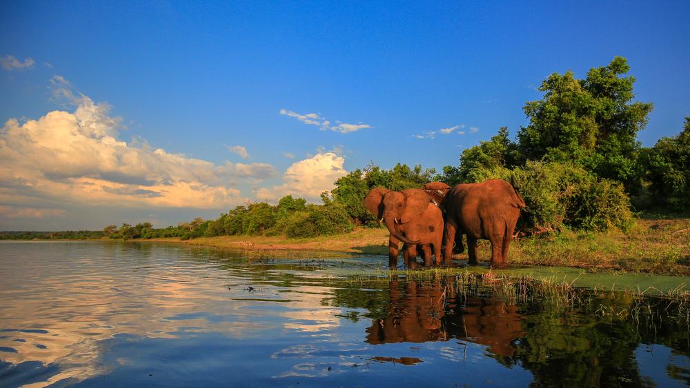 Rundreise im Krüger Nationalpark bis nach Mosambik