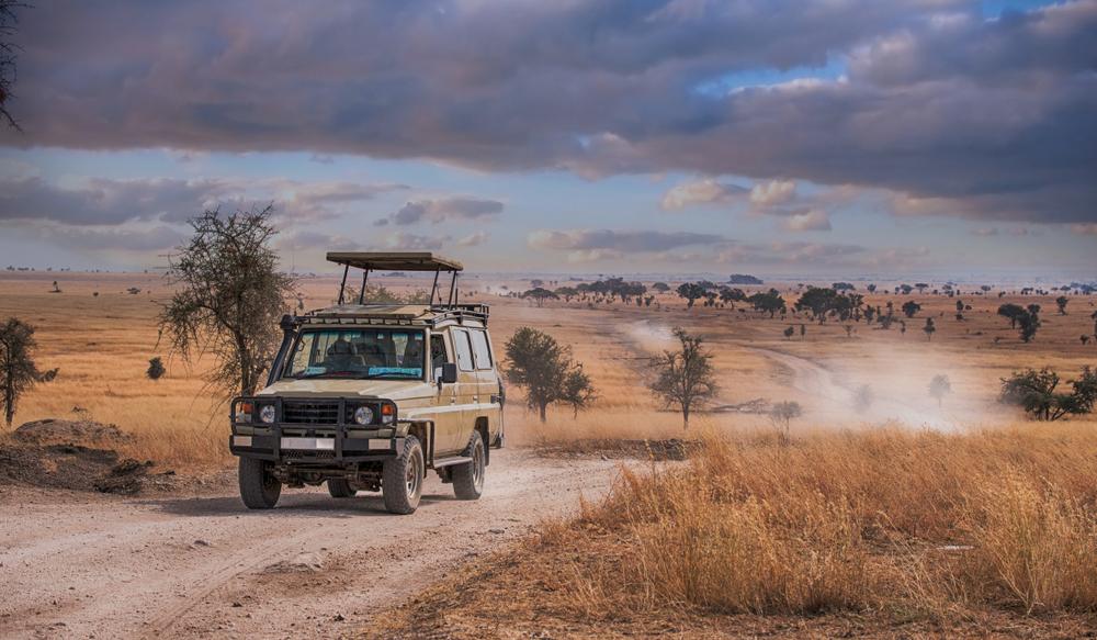 Pirschfahrt im Mkuze-Wildreservat